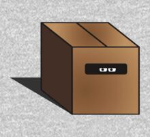 The Box by Jarrod Kamelski