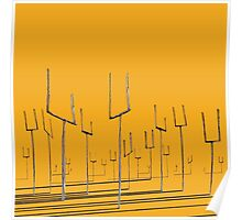 Origin of Symmetry  Poster