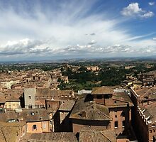 Under the Tuscan Sun 3 by Robin O'Luanaigh