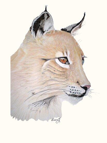 Lynx by Diane Giusa