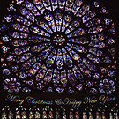 Rose Window, Notre Dame, Paris by Bev Pascoe