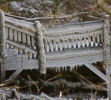 The icy bridge by krysleighphoto