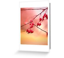 Magic Berries... Greeting Card