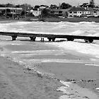 Elwood Beach by Tony Stefanovski