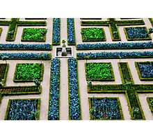 Formal Garden - Chateau Villandry, Loire Valley Photographic Print