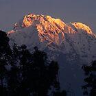 Annapurna B. Sunrise by Suze Chalmers