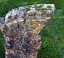 Odd Shaped Gravestone...... by lynn carter