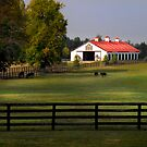 Lexington Horse Barn by Gary Pope