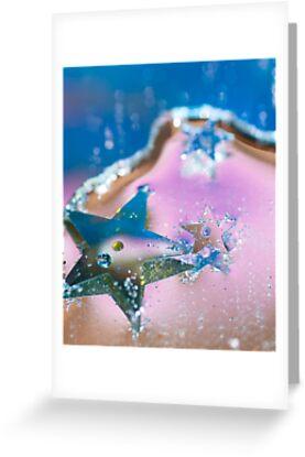 Star Fish. by Sherstin Schwartz