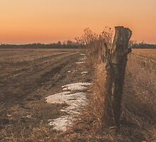 fence line at sunrise by Michelle Danker