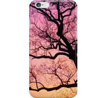 Overlook iPhone Case/Skin