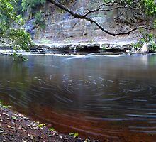 Natural Beauty - Kangaroo Valley, NSW by Malcolm Katon