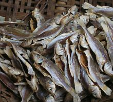 Fish in cane basket by pAgEdOwN
