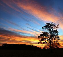 Country Sunrise by alissasanderson