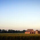 Farmland by alissasanderson