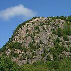 Climb Every Mountain by Monnie Ryan