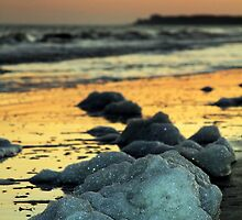 Sea Foam on the Beach by Terri~Lynn Bealle