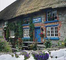 Irish restaurant - The Blue Door by bubblehex08