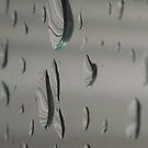 Drops on windows from the sideview by Nadia Korths