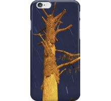 Shaved Tree and Star Trails iPhone Case/Skin