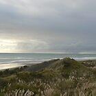 Kawhia Coast by mrbean