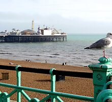 "UK: ""Brighton Pier Guardian"", Brighton & Hove by Kelly Sutherland"