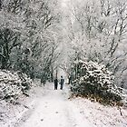 ' Snowy Walk ' by rosie320d