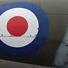 Roundel by Martin Jones