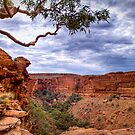 Dramatic Skies over Kings Canyon, 22 September 2008 by Steven Pearce