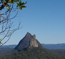 Crookneck and Beerwah form NgunNgun by Terry  Jackson