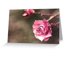 Beauty is a Light in the Heart Greeting Card