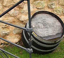 Penny's Hill Barrels 2 by Camilla
