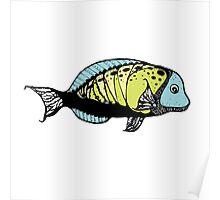 fish 7 Poster