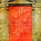 Red Doors by Dave Hare