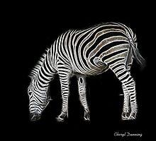 zebra by Cheryl Dunning