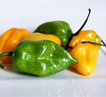 Chili Peppers by franceslewis