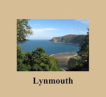 Looking down on Lynmouth  by Jacqueline Turton