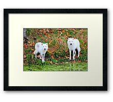 Our First Meeting Framed Print