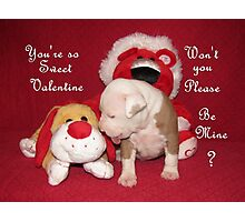Be Mine Sweet Valentine Photographic Print