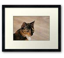 Perfectly Pixie Framed Print