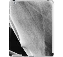00390 iPad Case/Skin