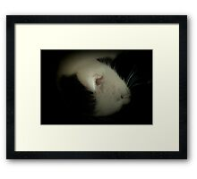 The Best Sleeps Framed Print