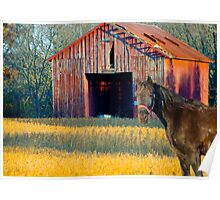 The Red Barn and Horse Poster
