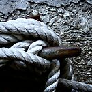 Tied Up by Andrea Barnett