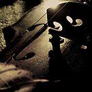 Autumn Simphony by Mojca Savicki
