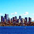 Seattle Skyline - Orton Series by Tamara Valjean