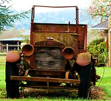 Old Commerce Farm Truck by Chuck Gardner