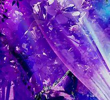 Purple Haze... by Julia Mainwaring-Berry