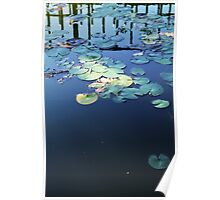 Lily pad on water - 2013 Poster