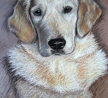 Golden Retriever Lady by Nicole Zeug
